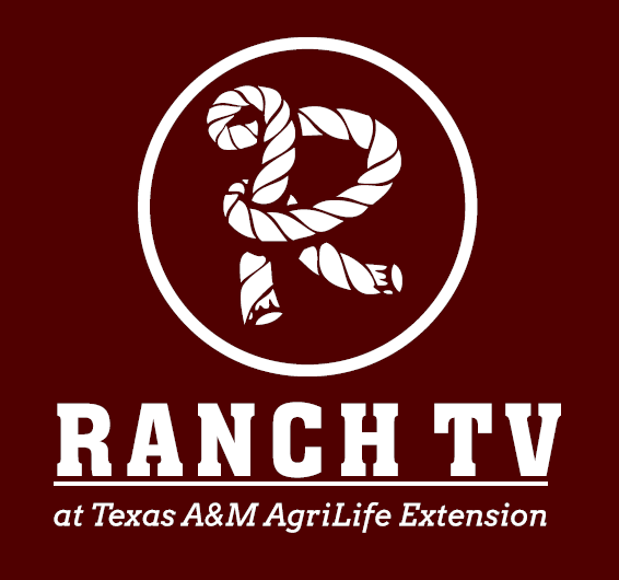 RANCH TV